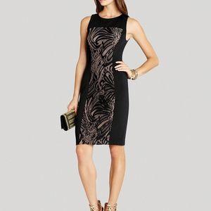 BCBG Dress w/ Lace Contrast. Excellent condition!